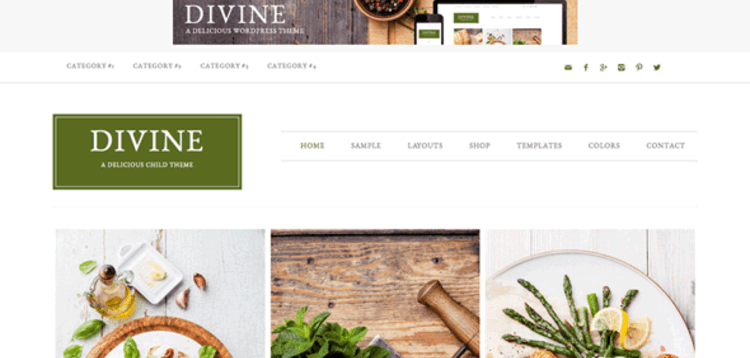 Item cover for download STUDIOPRESS DIVINE THEME